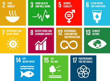 Arla contributes to the realisation of the UN's Sustainable Development Goals (SDGs)